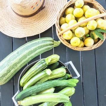 Zucchine e prugne